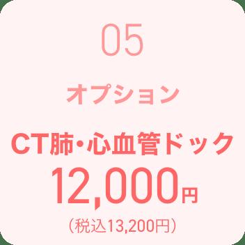 オプション CT肺・心血管ドック 7,500円